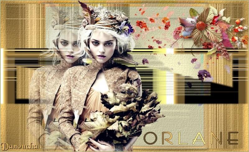 ORLANE (34-2014)