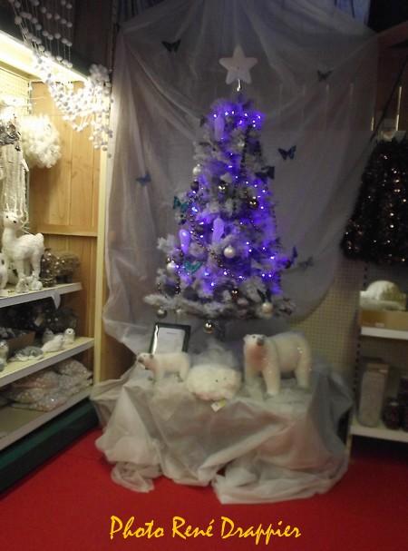 C'est déjà Noël au magasin Gamm Vert de Châtillon sur Seine...