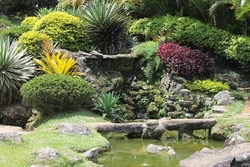 Effective tips for beautiful landscaping