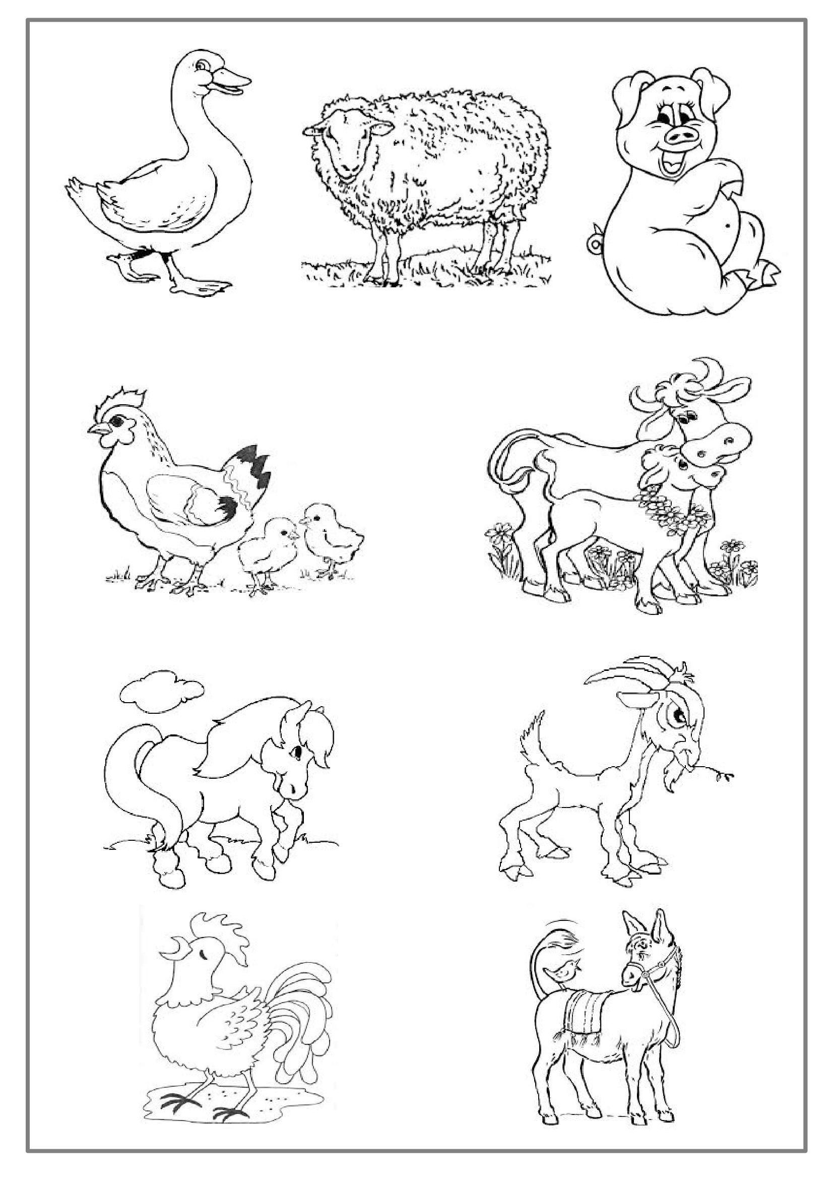 Coloriage Animaux De La Ferme Pdf.Coloriage Les Animaux De La Ferme Preprof