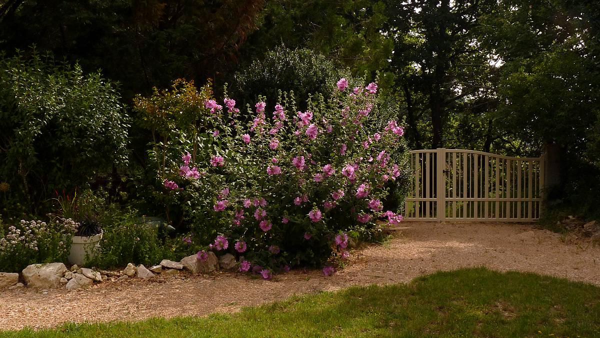 Au jardin de Marithé semaine 27/2013