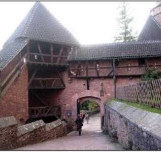 chateau-koenigsbourg 18