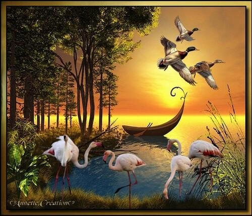 Mes Créations Oiseaux
