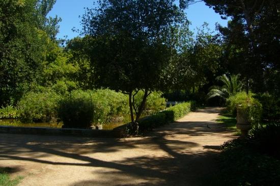 Z.U -parc P.R. de Pedralbes4