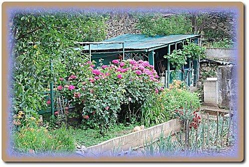 jardin-portes-ouvertes-26.JPG