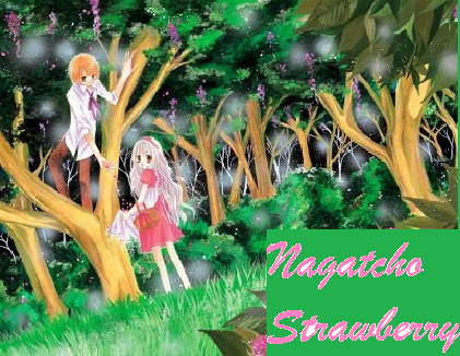 Nagatacho Strawberry