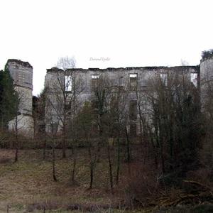 Ruines du Château de Montgoger