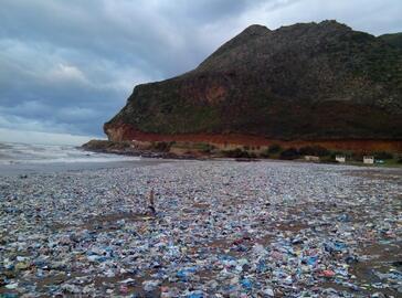 Arrêt sur mage : désastre écologique à Melbou (Béjaia)