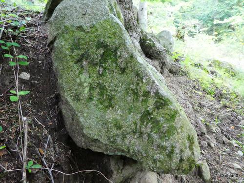 Peut être quelques gravures sur ce rocher...