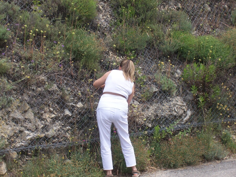 EN REVENANT D'ITALIE EN 2014   COL DE TENDE