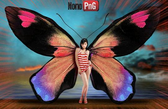 Tubes femmes papillons