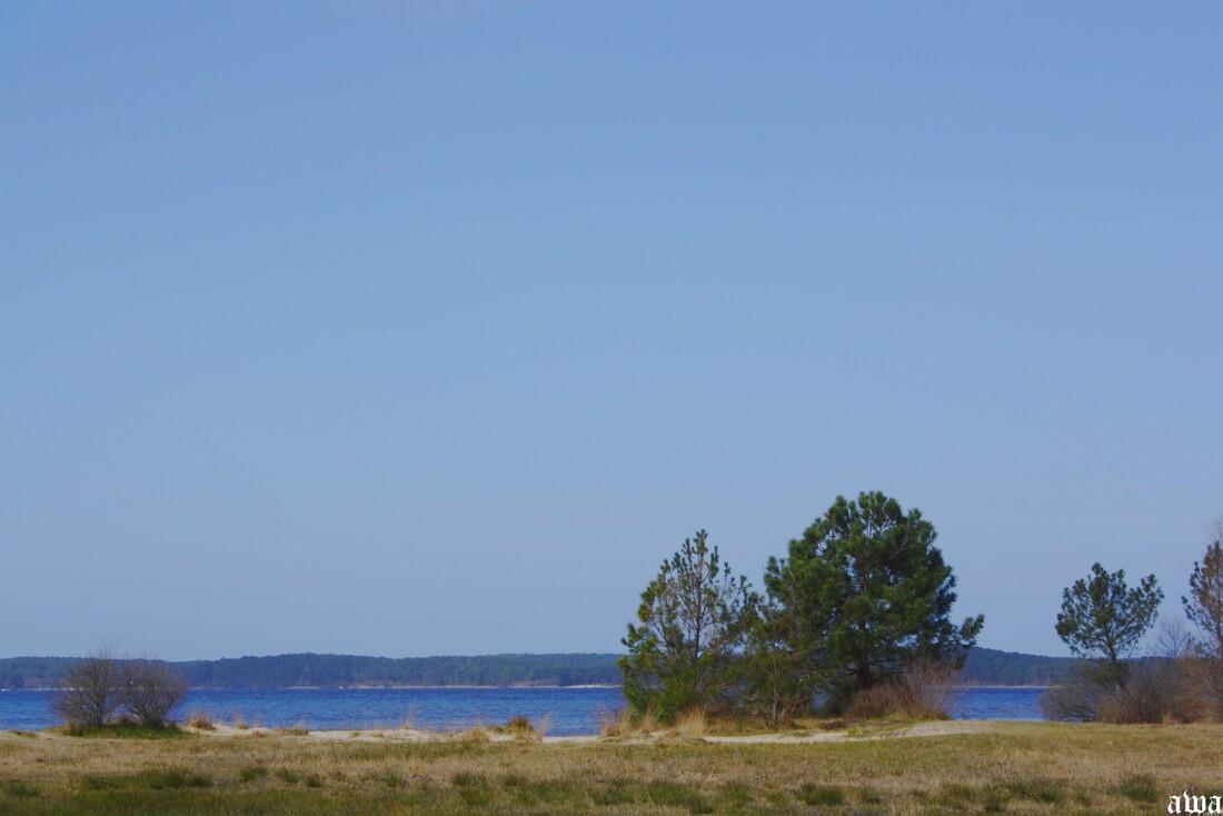 Le long du lac de Lacanau fin fevrier 2015