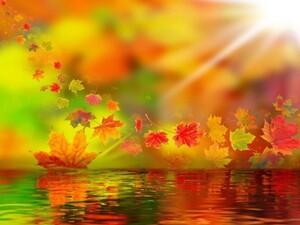 L'automne.............Joanne Lebeau