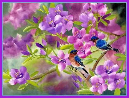 Douce Violette