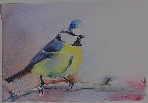 oiseau640.jpg