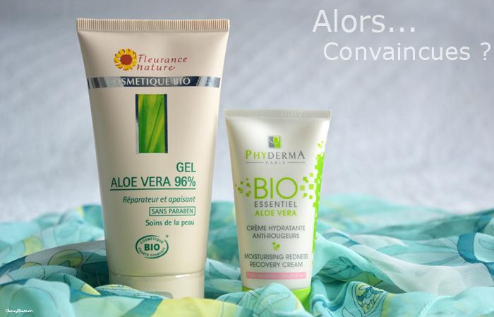 L'Aloe Vera, ce petit produit miracle !