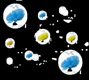 Tube bulles fleurs