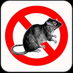 """Résultat de recherche d'images pour """"gif produits anti rats"""""""