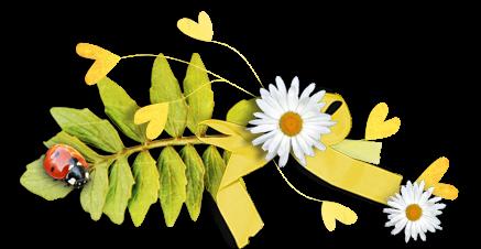 Ornements Floraux Série 36