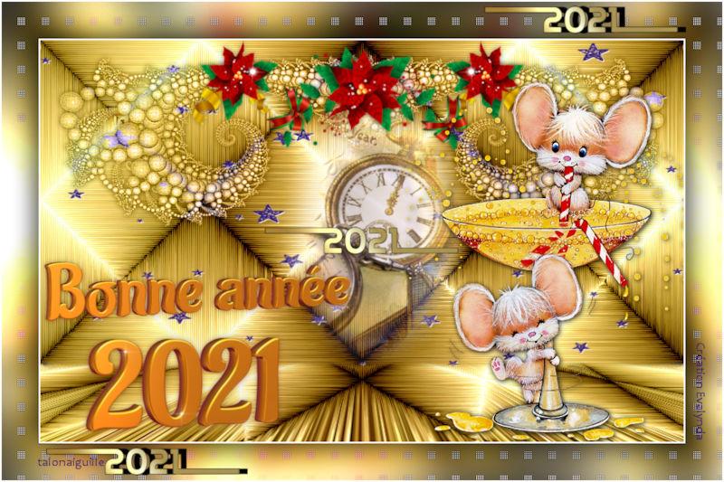 *** Bientôt 2021 ***