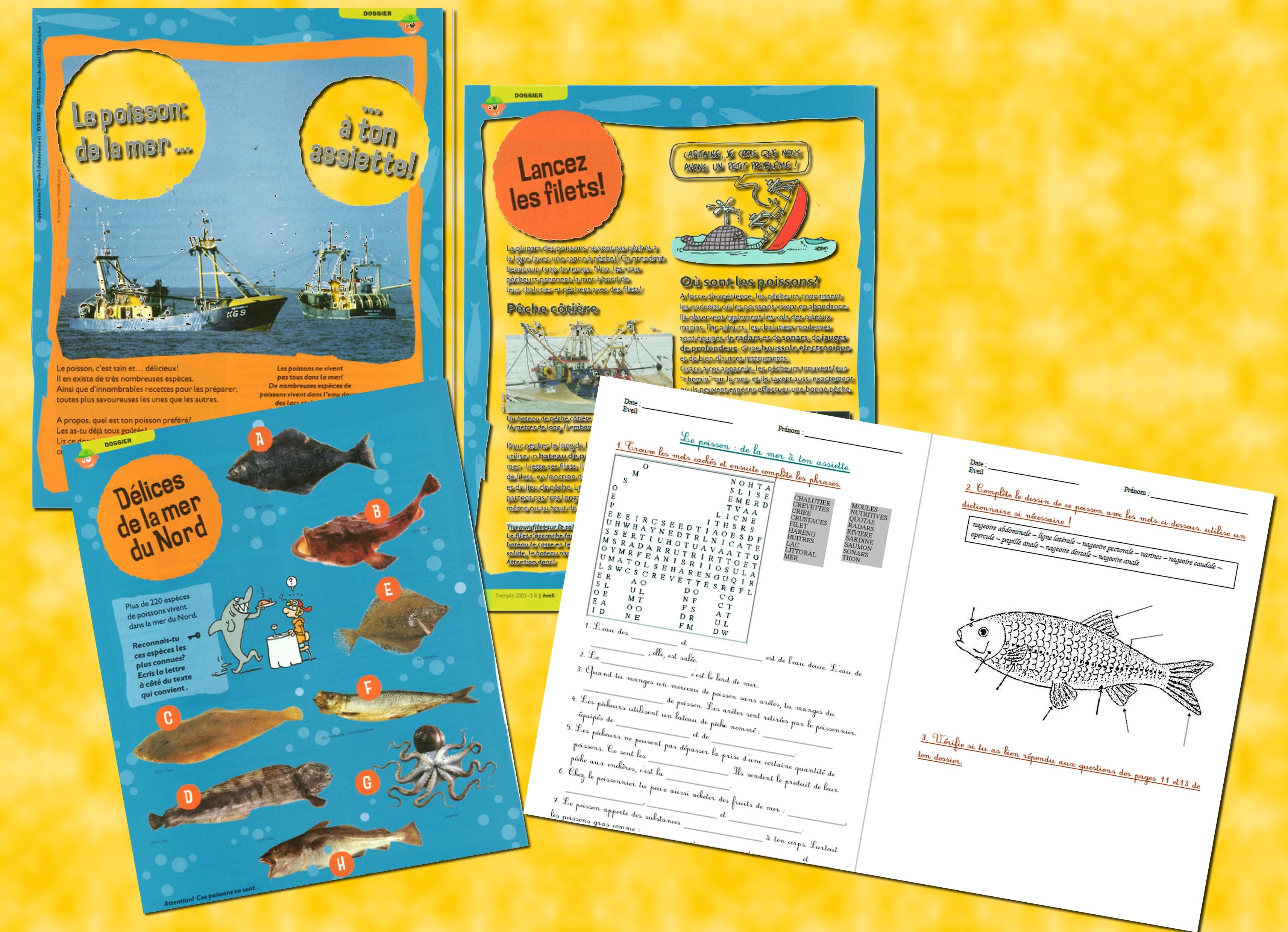 poisson presentation