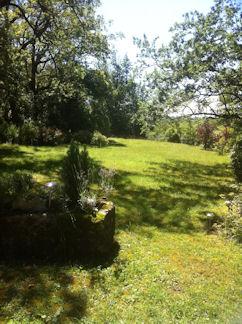 Un Espace de verdure