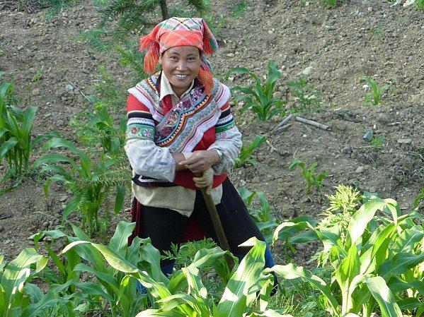 dans les rizières près de Yuanyang (4)