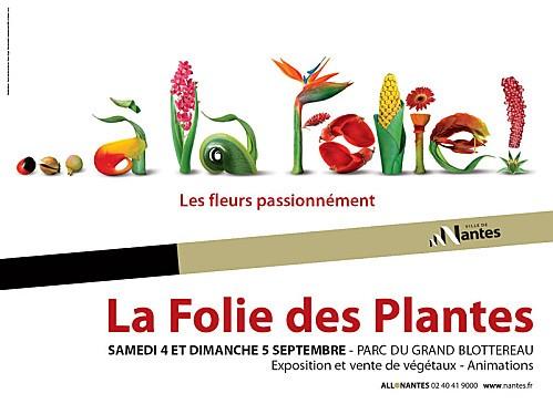 folplant10800.jpg