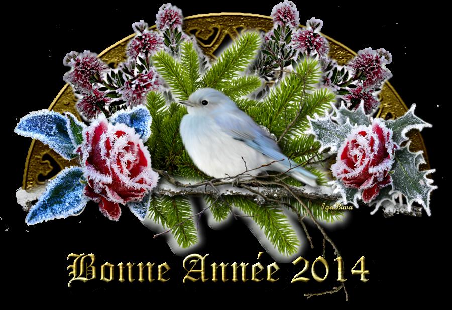 Meilleurs Voeux pour l' Année 2014