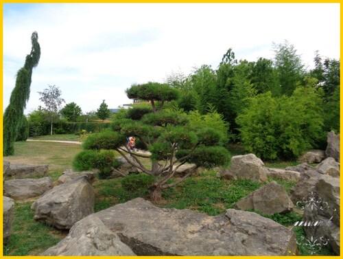 un joli parc 2