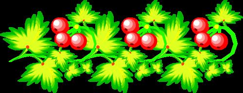 Flower Borders (65).png