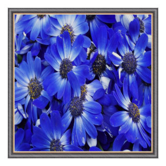 belles_fleurs_bleues_poster-r7ef4508b6a544e8ca137d57449f405e9_wfb_8byvr_324