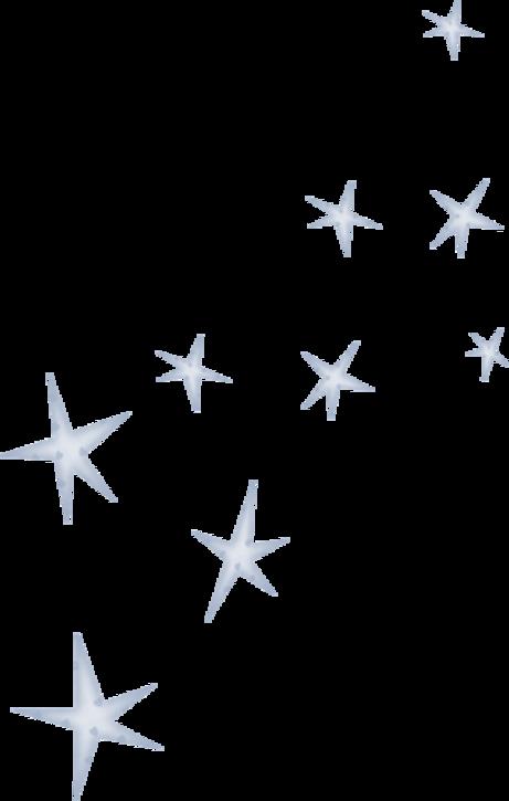Etoiles de ( Noël ) etc 13