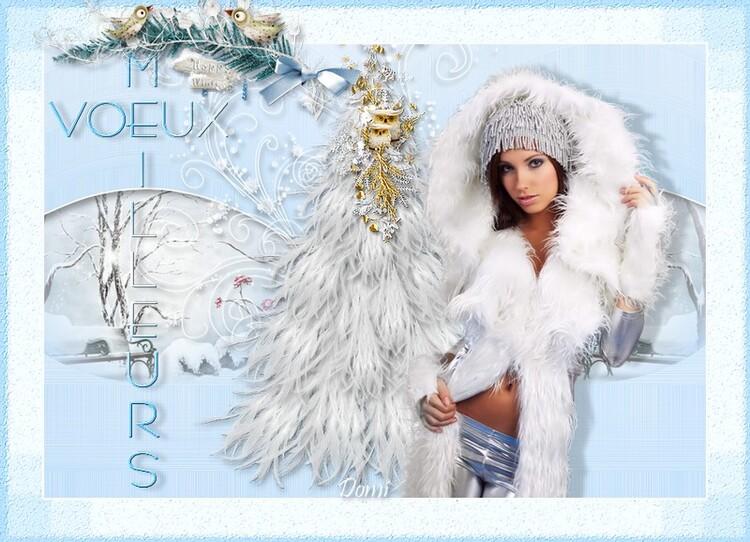 MEILLEURS VOEUX - tutoriel 36 /2014