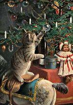 Noel en dentelle