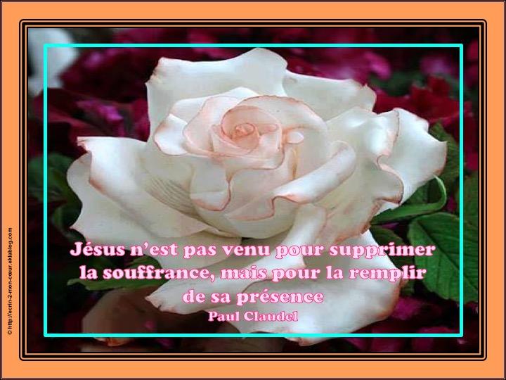 La présence de Jésus face à la souffrance