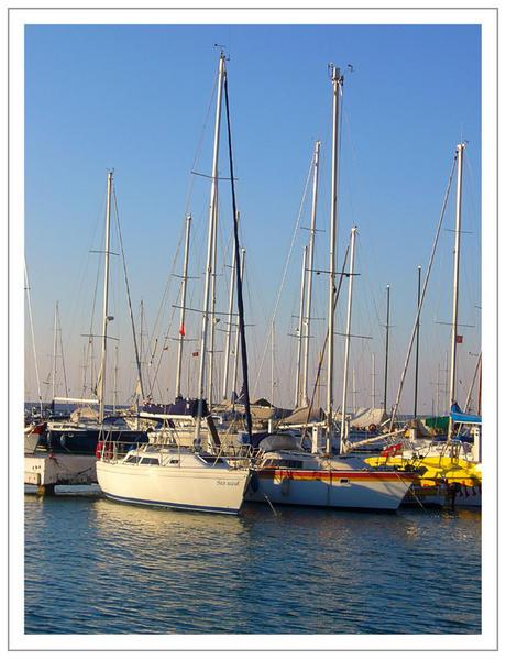 voiliers dans la marina