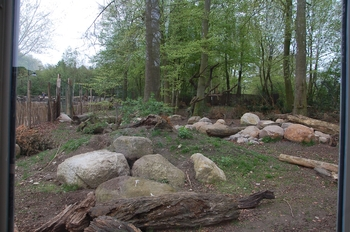 Zoo Osnabruck d50 2012 111