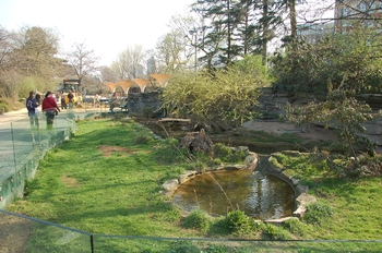 zoo cologne d50 2012 006