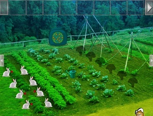 Jouer à Vegetable forest garden escape