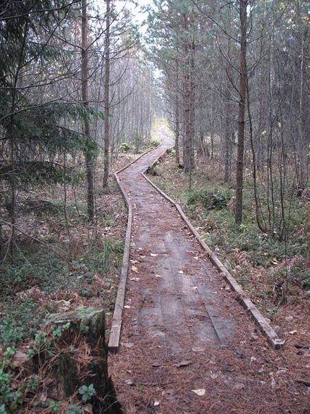 450px-Valgesoo_Landscape_Reserve_2.jpg
