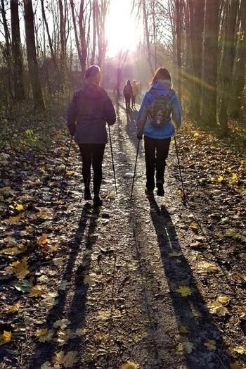 Marcheurs nordiques un mardi matin au coeur du bois des Forts et à l'orée de hiver