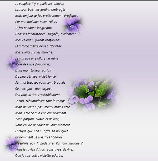 poésie: La petite violette