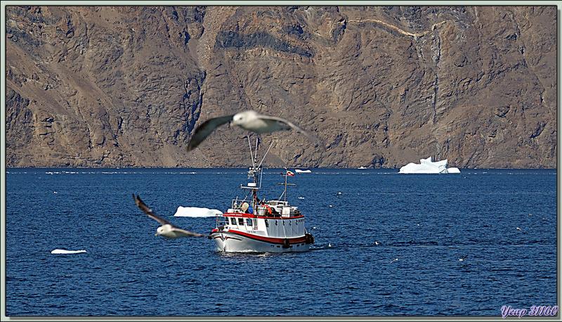 Le repas est vite avalé afin de profiter de la navigation, et je revois le petit bateau de pêche qui retourne à son très lointain port d'attache de même qu'un second - Karrat Fjord - Groenland
