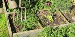 Suis au jardin.........