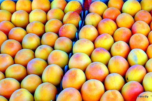 Au marché : cerises et abricots (3)