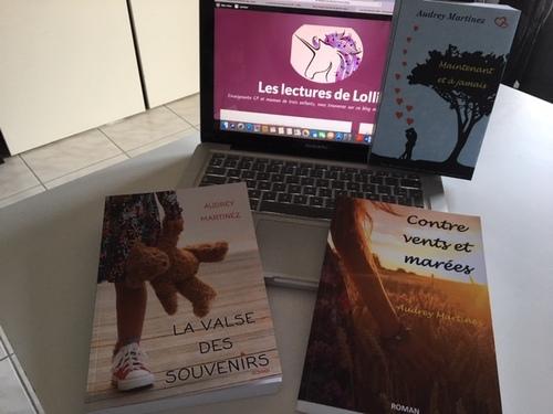 Les romans d'Audrey Martinez, professeur des écoles