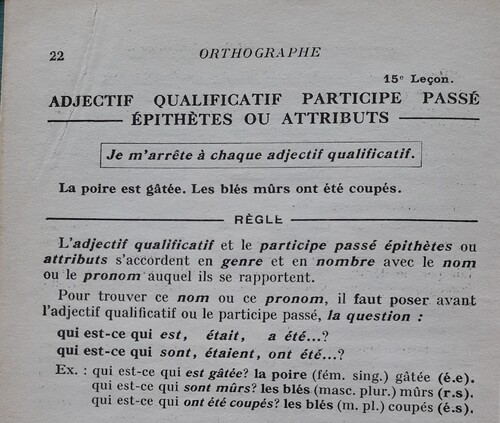 B / Adjectif : épithète ou attribut ?