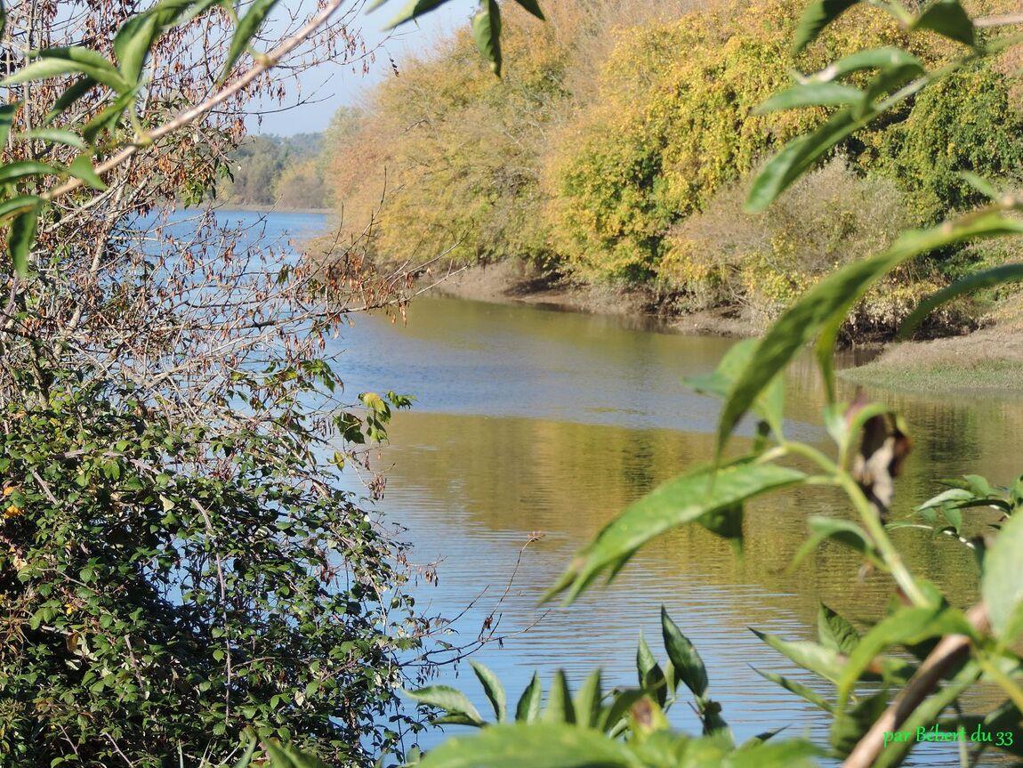 Couleurs d'Automne à Civrac sur Dordogne