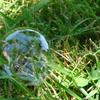 Une bulle dans mon jardin